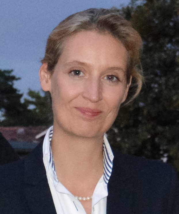 Alice_Weidel_80-16_cropped-e1493684423497